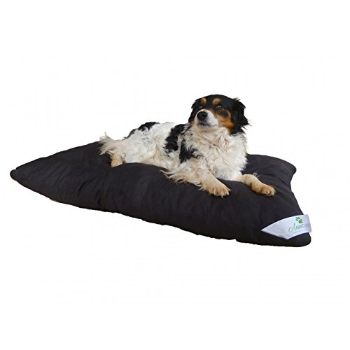tapis hygienique pour chien couches. Black Bedroom Furniture Sets. Home Design Ideas